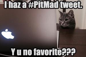 #PitMad Lolcat